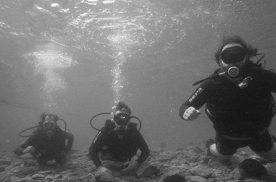 Israel Dive - diving in Eilat, Israel照片
