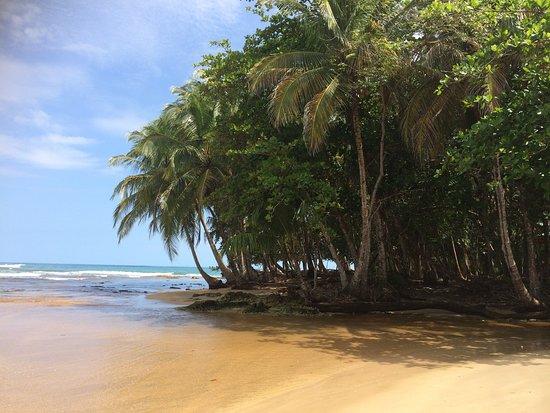 Cahuita, Costa Rica: getlstd_property_photo