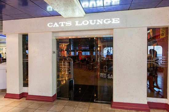 Cats Lounge on Carnival Fantasy