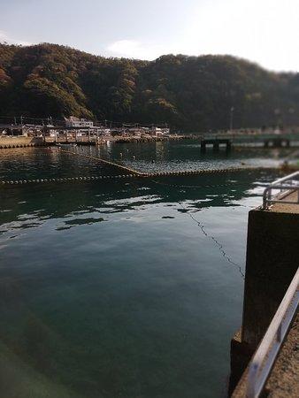 Fishing Park Mikata