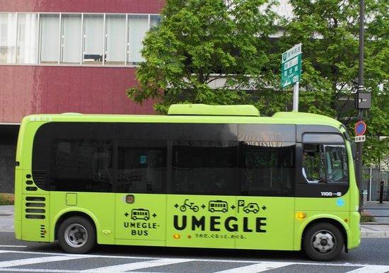 Umeguru Bus