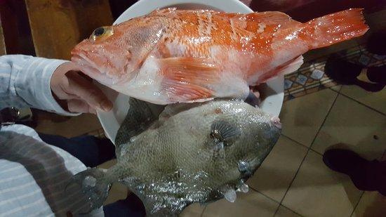 Restaurante Asador La Marisma: Pescado fresco