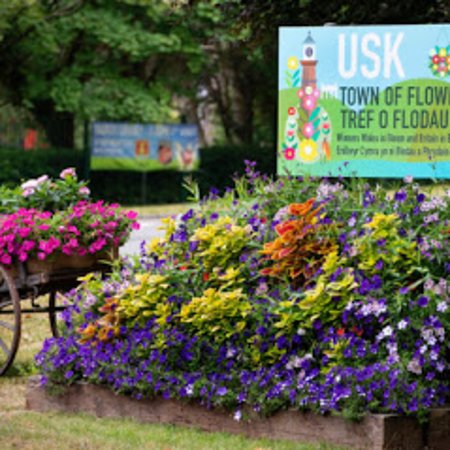 Usk in Bloom