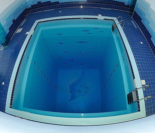 Matera, Italy: Una piscina molto particolare. Con una profondità di undici metri è utilizzata per le attività di subacquea e apnea. Un luogo unico per poter praticare corsi e allenamenti di queste discipline.