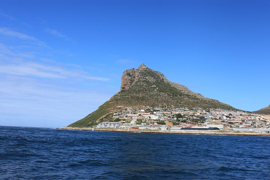 Full-Day Cape Point & Cape Peninsula Sightseeing Tour from Cape Town: Hout bay