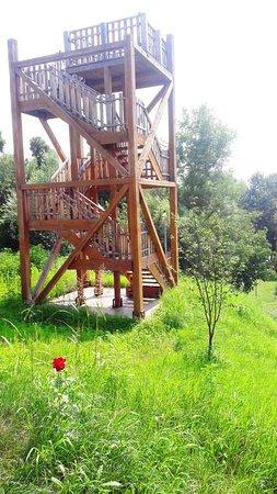 Birdwatching Tower - Blahnita Reservation - Natura 2000 and Ramsar Site