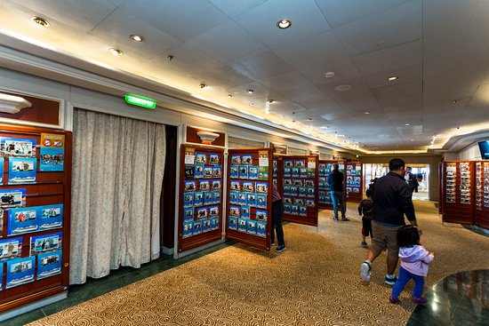 Photo and Video Gallery on Star Princess