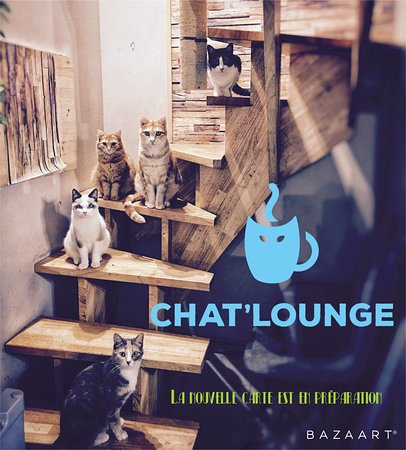 Chat'Lounge