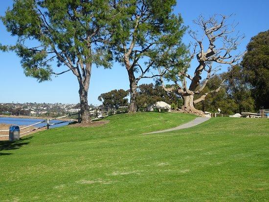 Maxton Brown Park