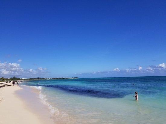 Playa Publica 88