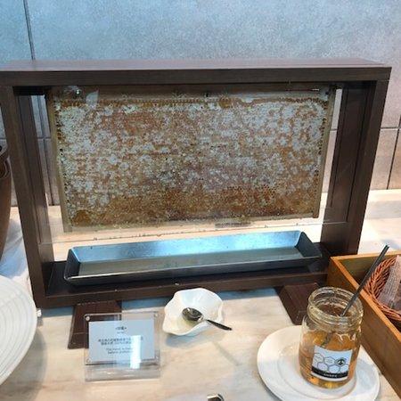 巣蜜から取れるはちみつ。見た目も楽しい朝食でした!