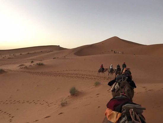Shared Morocco Trips