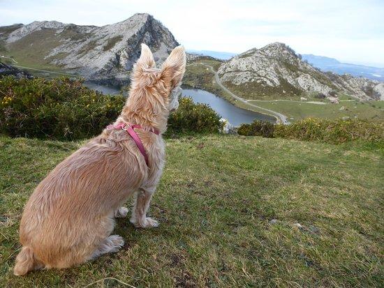 Difícil mejorar la ruta que hicimos con Ven a Picos