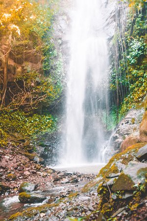 Province of Guanacaste, Costa Rica: Secret waterfall on one of our tours.