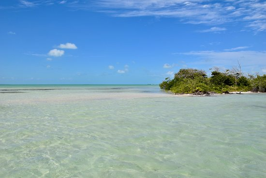 Belize Parasail Plus: Sandbar in the middle of the ocean!
