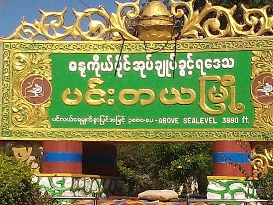Myanmar Driver & Guide