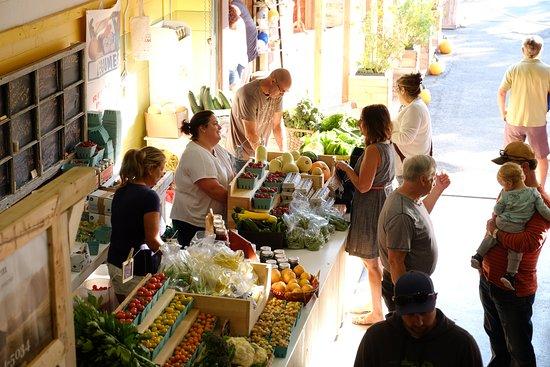 Producteur de fraises et de légumes locaux