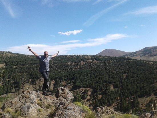 Bosques de Huinganco