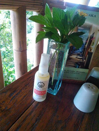 A very nice bug spray that is available in the restaurant, all natural. After being introduced to this in the restaurant, I have used it daily whenever I am in Bali.
