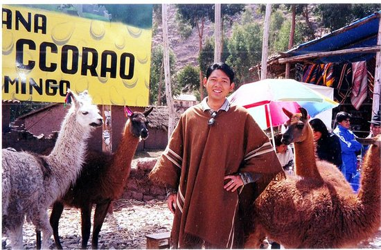 Cusco Region, Peru: Me in my poncho, with some llamas in Ccorao