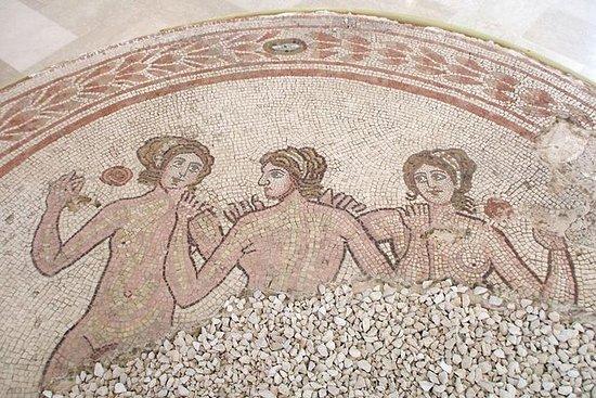 Privat tur: Ruins of Gnatia (Puglia...