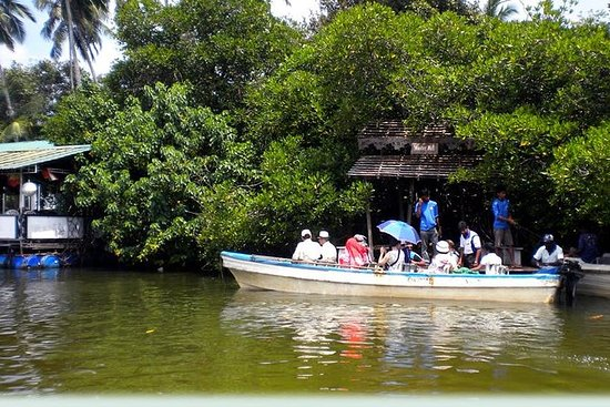 Maduwa River Boat Safari