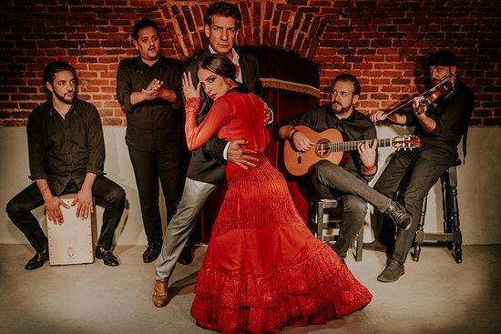 Entrada a Essential Flamenco