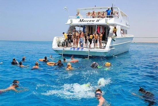 Dolphin House Snorkeling- Banana...