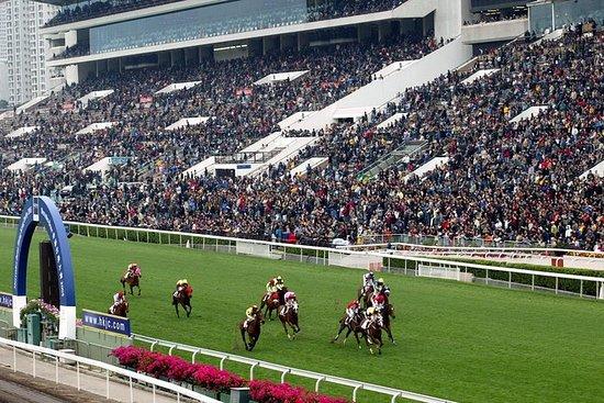 Nyt hesteveddeløpene som VIP-gjest på...