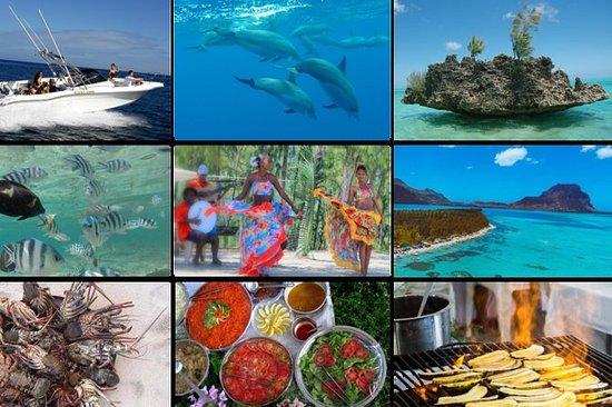 Golfinhos e churrasco folclórico com...
