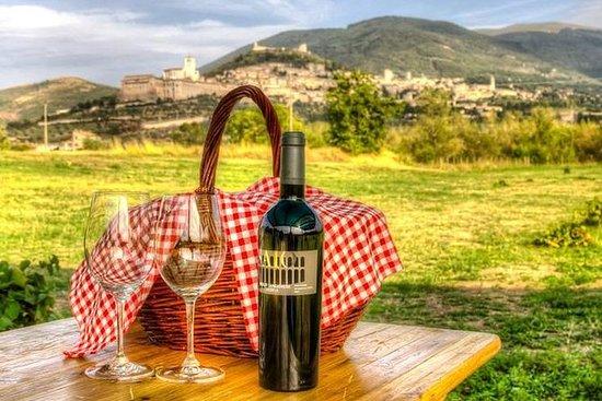 Picknick und Weinprobe im Weinberg...