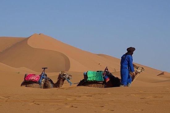 南モロッコでの冒険ツアー(マラケシュからフェズへ)、砂漠のテントでの夜