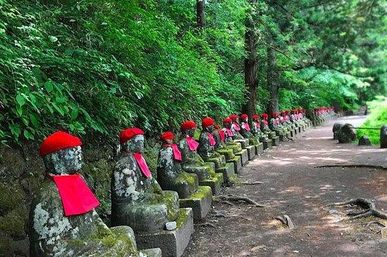 Nikko Tour guiado de veículo fretado...