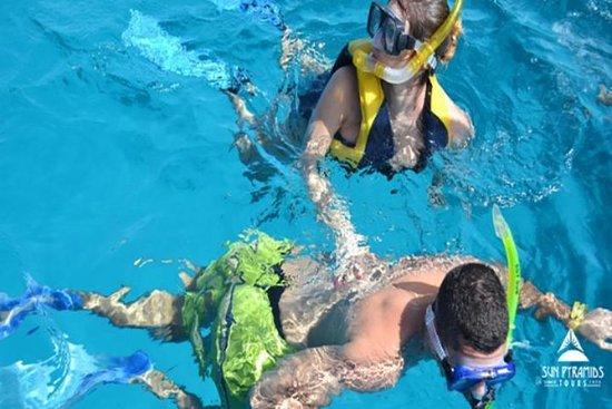 Best Snorkeling in Taba Egypt