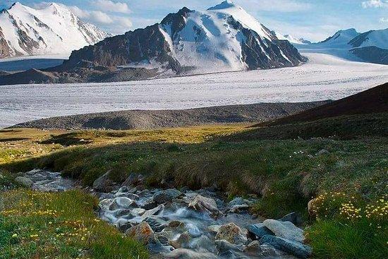 アルタイ山脈を探索する