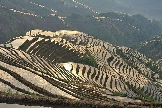 私人旅遊 - 桂林 - 龍勝一日遊