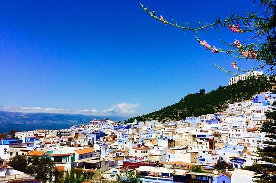 Excursions from TANGIER