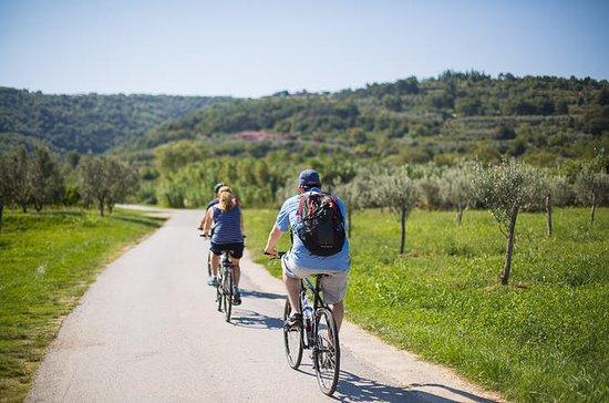 科佩尔全景Parenza自行车之旅