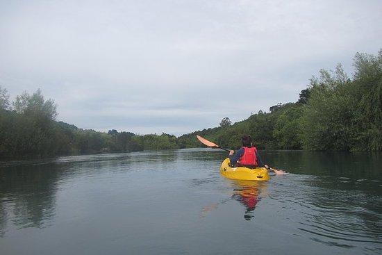 Kayak Maullín River