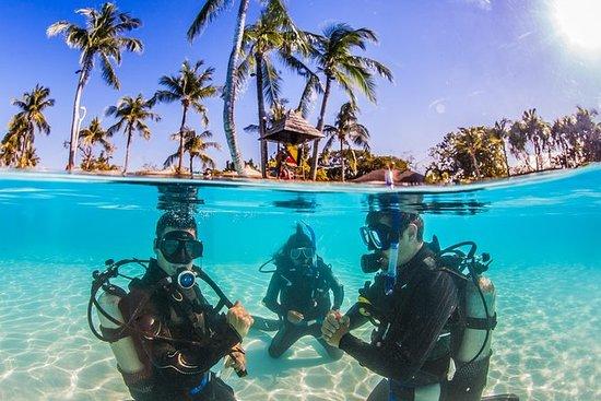 Cours Scuba Diver (SSI)