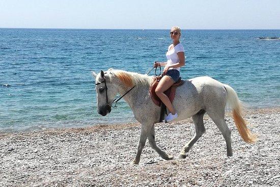 Equitación, Tiro con arco y tesoros...