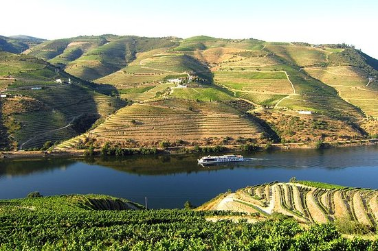 Douro Valley ( River Cruise Pinhão and...
