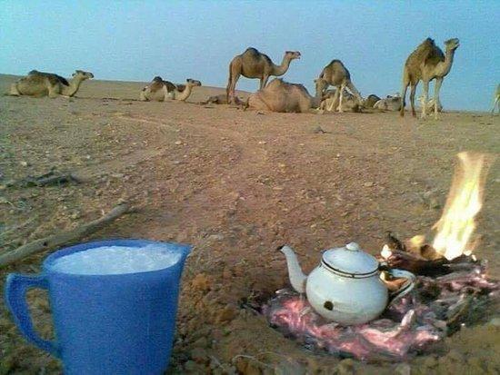 Район Аль-Джуфра, Ливия: الصحراء الليبيه
