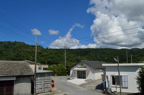Ogimi-son, Japón: 58号線、田嘉里入口から入り3分ほど。 山に囲まれ、ポツンと酒造所があります。