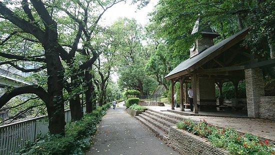 สวนเอโดกาว่า