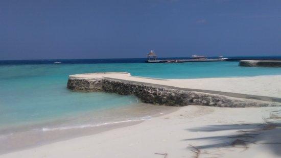 迪格瑞岛照片