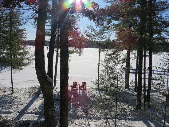 Buckhorn, Kanada: Outdoor on the property