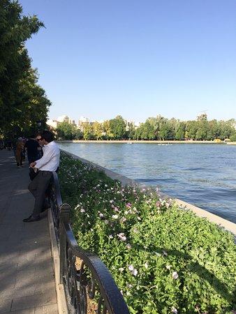 Hay bastante sombra alrededor del lago, un placer pasear por aquí.