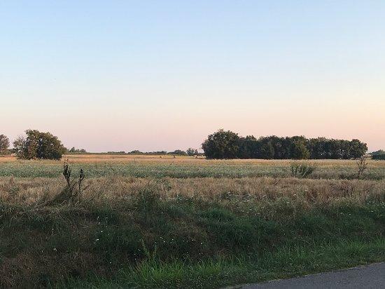 Agriturismo Dolce Verde: la vue devant le gite