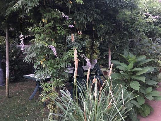 Agriturismo Dolce Verde: Le jardin très bien entretenu